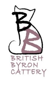 logo-british-byron.com